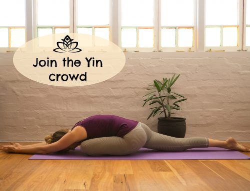 Join the Yin crowd